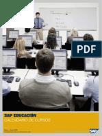 Calendario SAP 2010