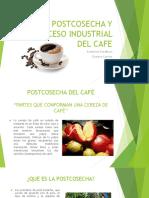 Cosecha y Postcosecha del Cafe