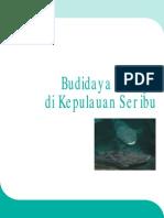 Budidaya Kerapu