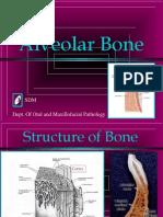Alveolar Bone