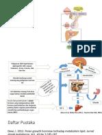 tugas endokrin hormon GH.pptx