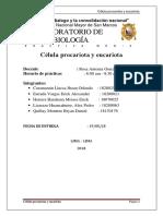 Practica #2 Celula Procariota y Eucariota