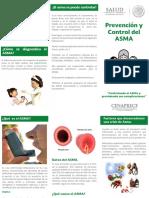 TripticoAsma1.pdf
