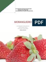 Luis-Eduardo-MORANGUEIRO-miolo.pdf