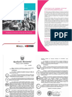 Programa Primaria Reajustado.doc