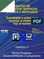 GPSMM_Cap_11 (1).ppt