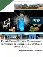 Plan-de-Desarrollo-Local-Concertado-de-la-Provincia-de-Concepcion-al-2023-v12-01-convertido.docx