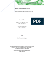 Informe-Componente-pratico.