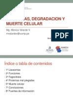 Semana 7- Teoría- LISOSOMAS.pdf