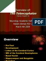 AHD the Telencephalon R. Altman 4-03-09