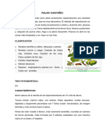TRABAJO DE agrometereologia.docx