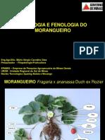 fisiologia_fenologia.pdf