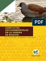 Conflictos Socio Ambientales Sabana Bogota Humedal Moyano Megraproyectos 2017