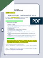 Instrucciones Para La Presentación Del Ensayo - Amparo Valenzuela (1)
