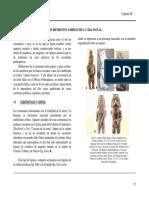 Sexualidad en las culturas antiguas.pdf