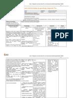 Pauta planificacion-ejemplo