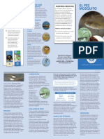 Mosquito fish book