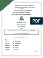 GUEMOURI Aghiles & MERDAS Oualid.pdf