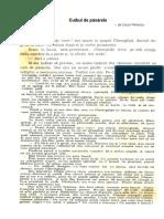 169966249-Cuibul-de-păsărele-poveste.pdf