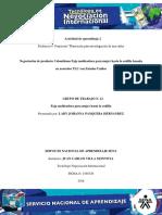Solucion Evidencia 4 Planeacion Investigacion