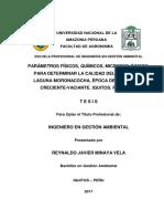 Reynaldo_Tesis_Titulo_2017 microbiologico fisico quimico del agua.pdf