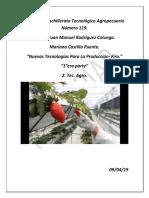 proyecto agropecuario