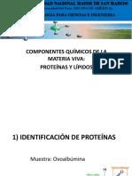 LIPIDOS Y PROTEINAS