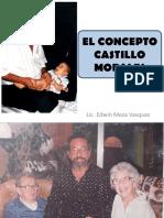 7-Castillo-morales.pdf