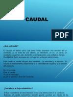 EL CAUDAL- Enilsa.pptx