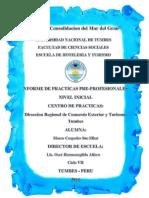 informe nivel inicial.docx