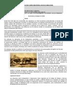 Guia de Informacion Complementaria Insercion 2c