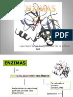 repasos-enzimas-16kg1x1.ppt