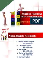 Anatomi_Fisiologi_Organ_Reproduksi_Wanit.pptx