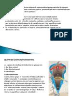 Presentación12