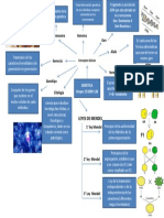 Mapa Mental Genetica