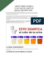 Bmp c5 Procedimiento de Limpieza y Desinfeccion