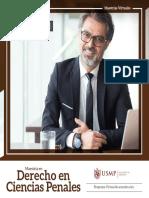 Brochure Derecho Ciencias Penales
