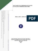 C17raa.pdf