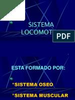 02_SistemaOseo 2018
