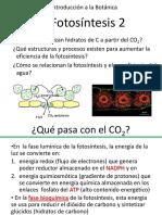 Teórico 9 Fotosíntesis II