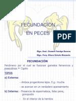 8da_fecundacion_embriogenesis.ppt