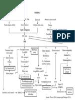pathway diabetes melitus
