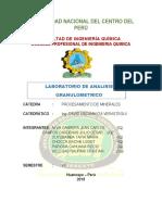 INFORME-MINERALES (1).docx