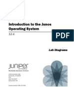 Introduction to the Junos Lab Diagrams