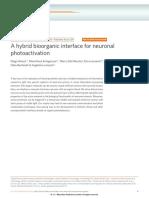 A hybrid bioorganic interface for neuronal photoactivation.pdf