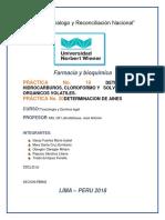 Informe 17 Determinacion de Arsenico - 2