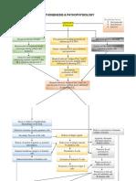 SLE Patogenesis & Patofisiologi.pdf