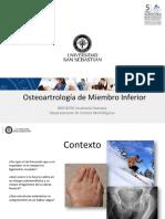 Clase 28 Osteoartrologia de MMII_BDIO1050.pdf