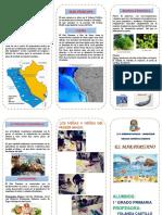 323468678 Triptico Mar Peruano