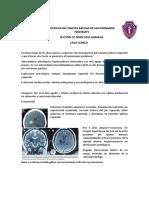 PFPC-3-NEURO.docx